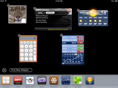 Dashboard for iPad