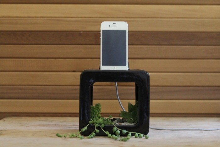 Bloombox natural iPhone amplifier dock doubles as a fancy planter