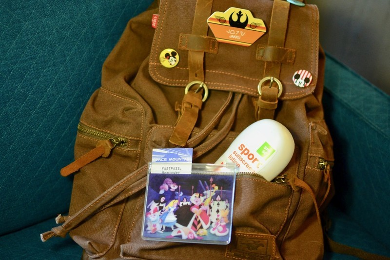 da3d64a76e The best type of backpack to take on your trip to Disneyland