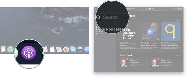 Launch the Podcasts app, click on the search bar