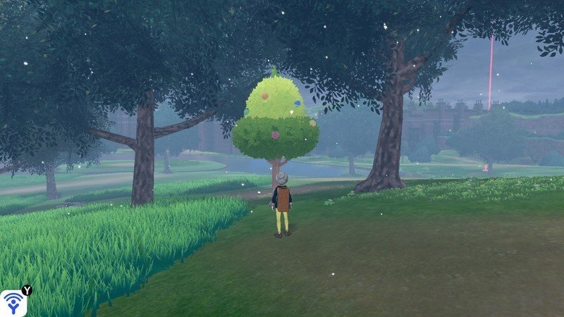 find a berry tree in the world of Pokémon Sword and Shield
