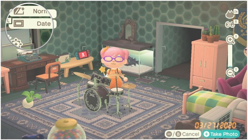 Animal Crossing New Horizons Camera Frame