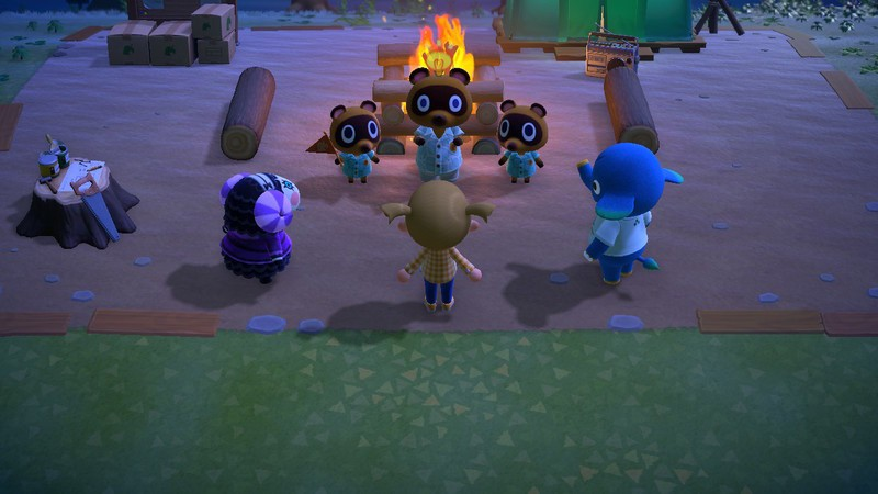 Animal Crossing New Horizons User Reaction