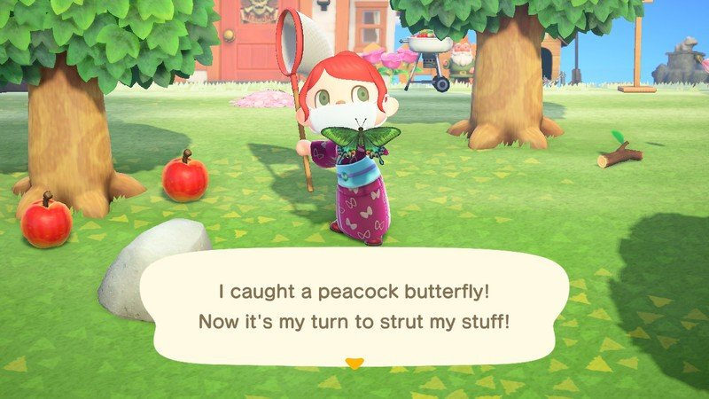 Animal Crossing New Horions Peacock Butterfly