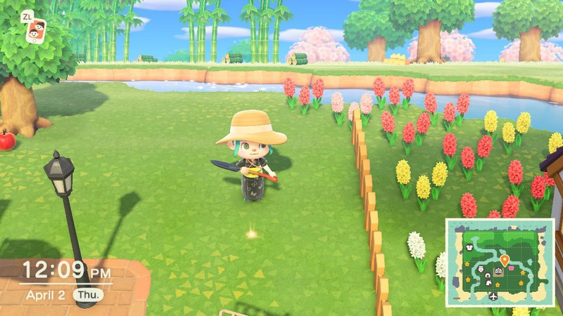 Animal Crossing New Horizons Money Tree