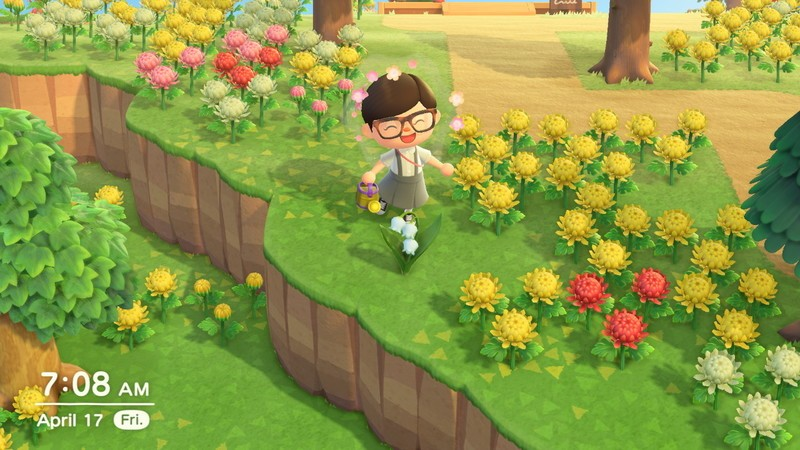 Animal Crossing New Horizons Perfect Town