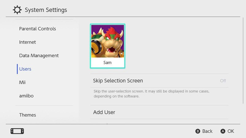 Switch System Settings User