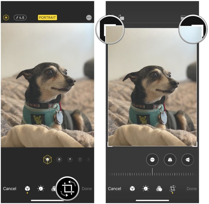 How to manually crop a photo in Photos on iPhone and iPad by showing steps: Tap the Crop button, then drag the corner handles until you are satisfied with the crop