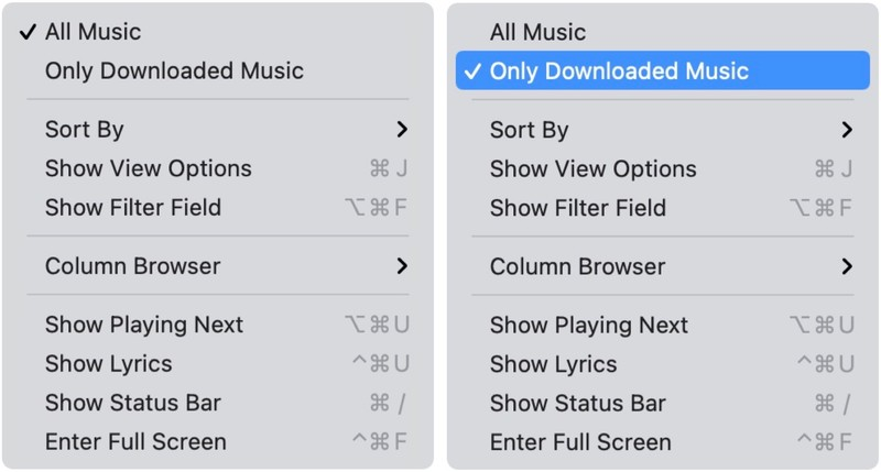To see your local music on your Mac, open the Music app, then select Song or Albums from the menu on the left under Library. Choose Only Downloaded Music under the View menu at the to.