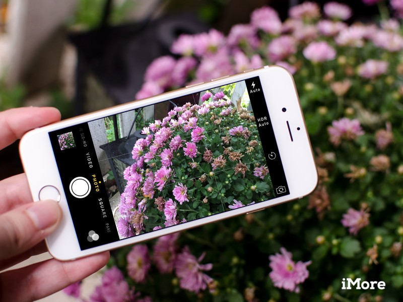 iPhone dominates Flickr's most popular cameras of 2015