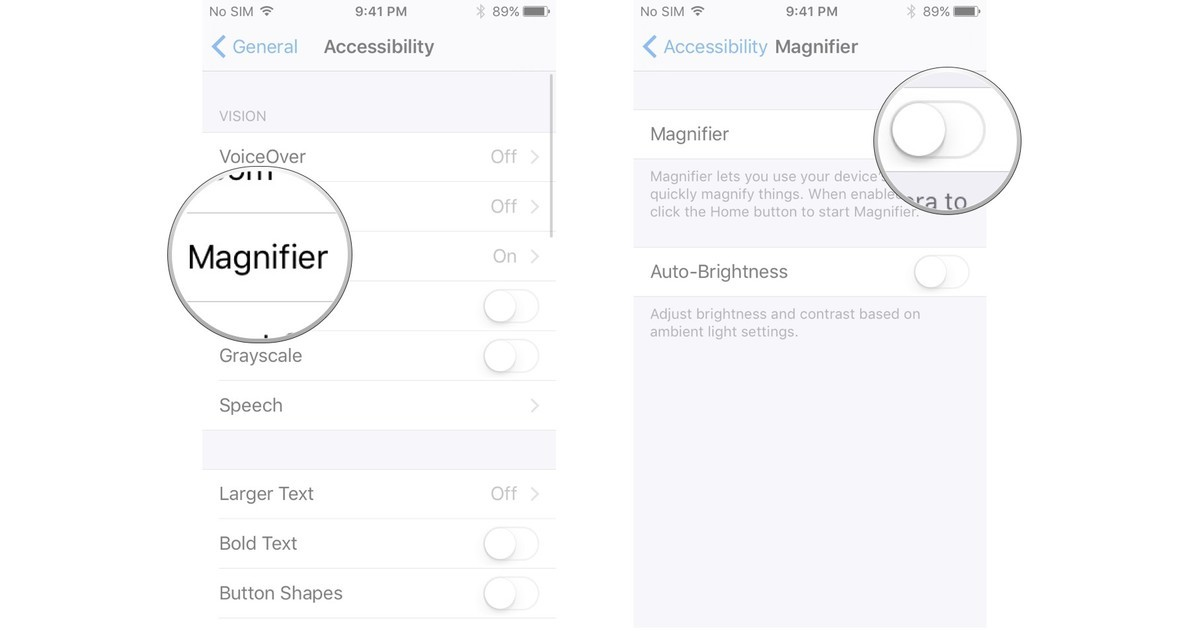 Tap Magnifier, tap the switch next to Magnifier