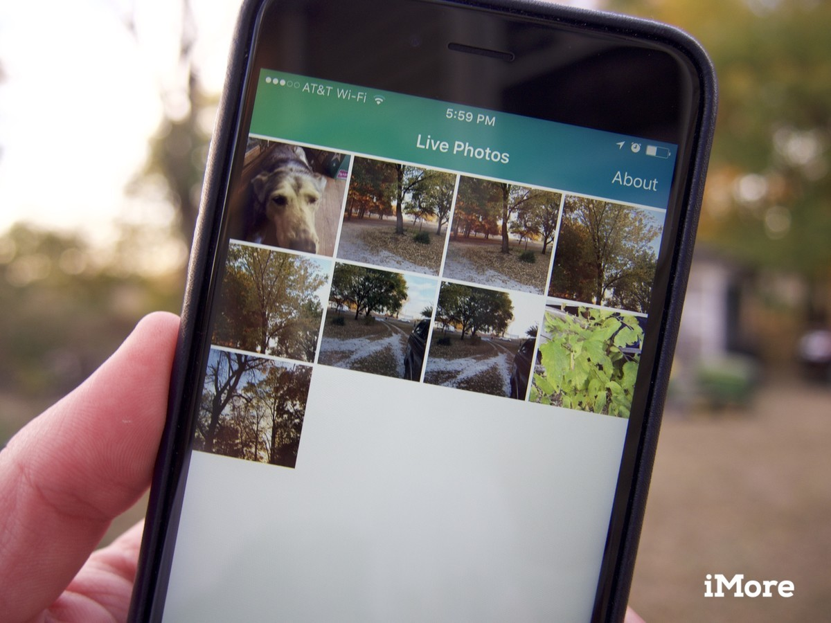 Lively lets you turn your Live Photos into animated GIFs and movies