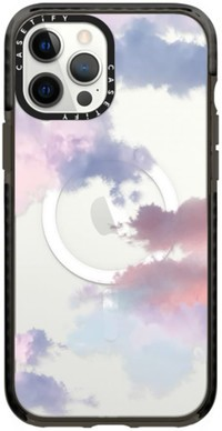 Casetify Iphone12 Pro Max
