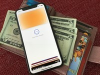 Apple Card users can see their annual spending with iOS 14.2 beta 2