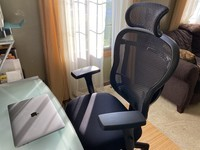 Review: The Oak Hollow Aloria Series Office Chair is comfy and customizable