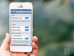iOS 7 wants: Ability to mute alerts when on a call