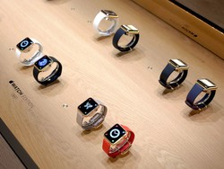 Which Apple Watch Edition should you get?