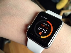 Apple Watch apps: A new beginning for developers