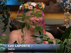 Nude and surrounded by trees: TWiT talks Apple retail