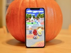 Animal Crossing: Pocket Camp down: Here's why