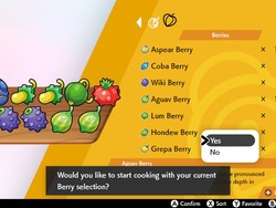 Pokémon Sword and Shield Berries, Berries, and more Berries!
