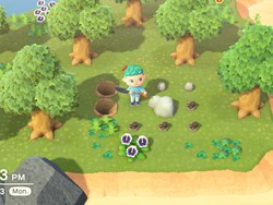 Animal Crossing: New Horizons — How to get 8 items from rocks