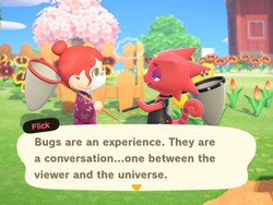 How to catch the most bugs in the Bug Off in Animal Crossing: New Horizons