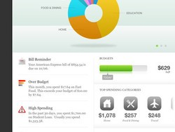 Mint.com for iPad now available