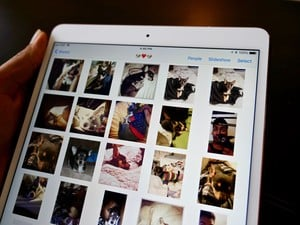 How to share photos with Family Sharing and iCloud