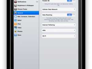 iPad SDK Settings: Tethering, Voice Mail, MMS, Wikipedia Search