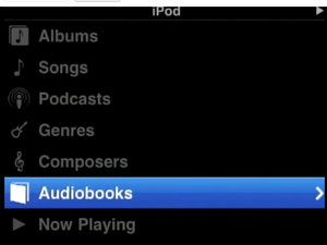 iPhone OS 4: iPod application includes hidden automobile integration