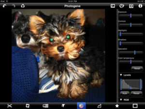 Quick Review: Photogene for iPad