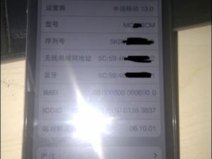iPhone prototype running China Mobile -- Real, fake, or really fake?