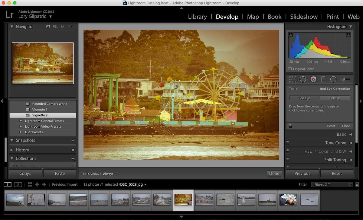 Capture One 11 Photo Editing Software Single