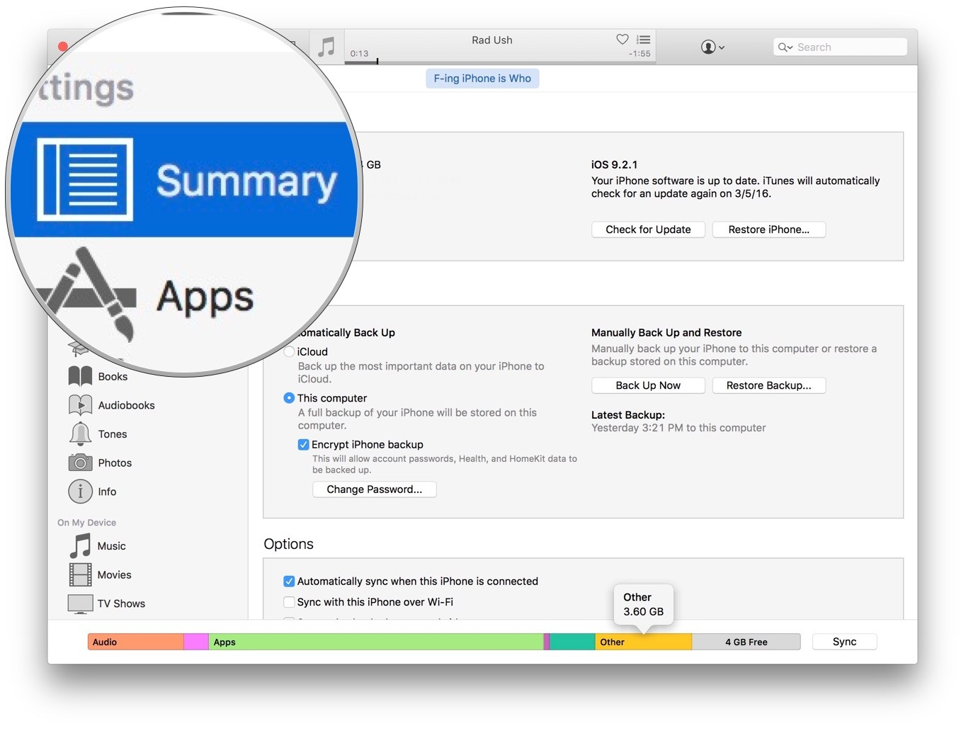 Device summary in iTunes