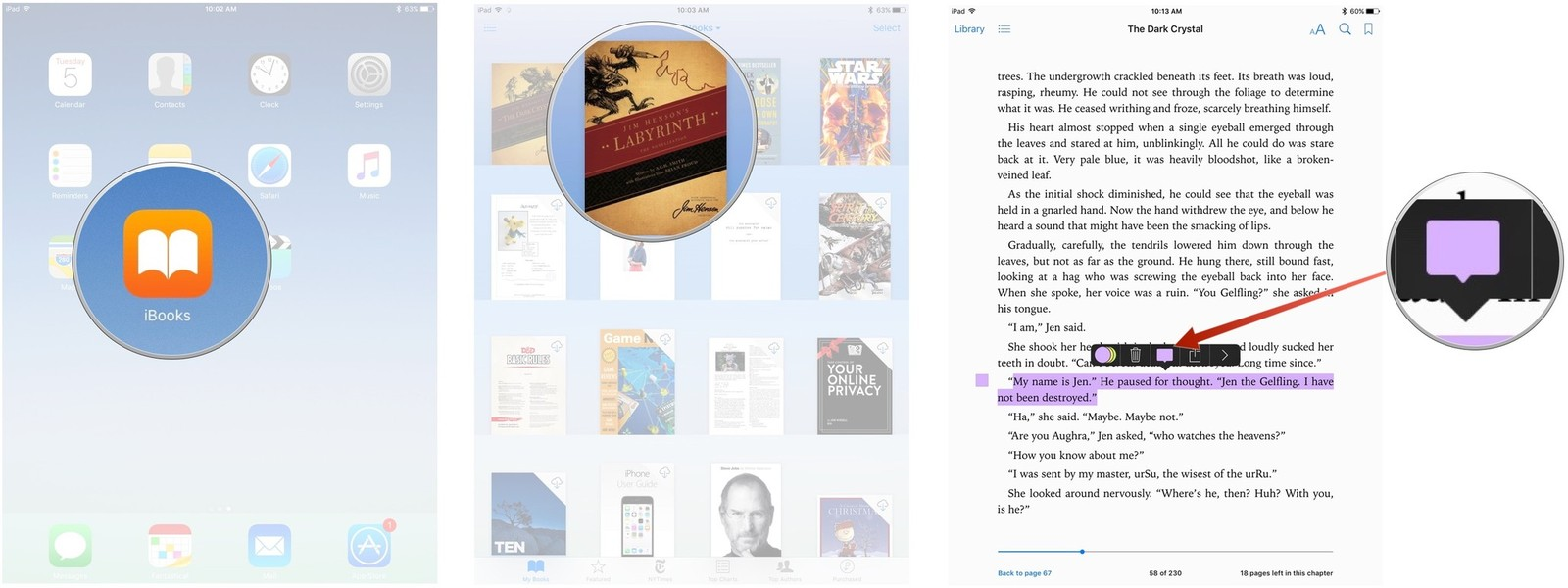Selecting The Note Options In Ibooks