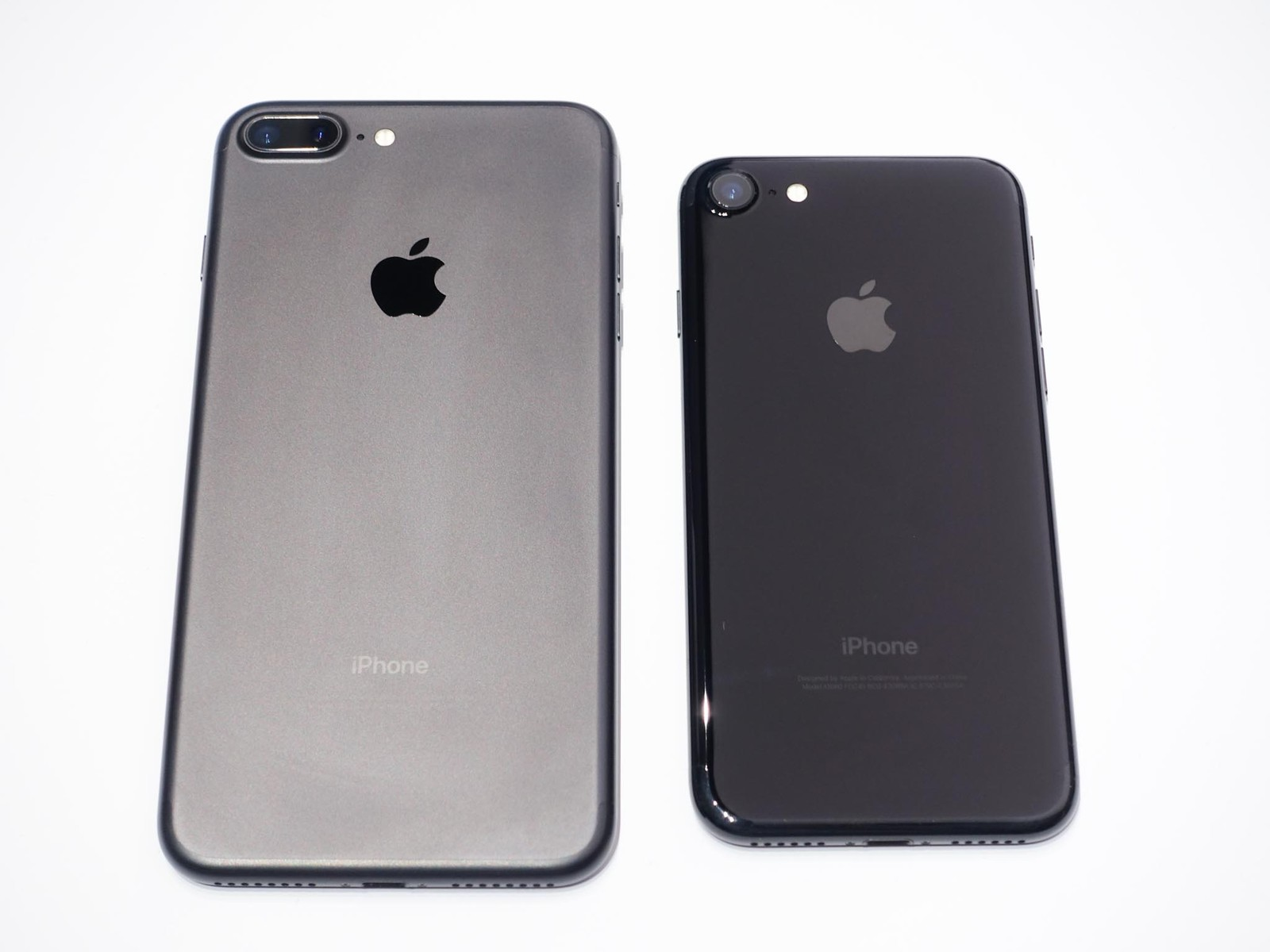 iPhone 7 or iPhone 7 Plus size