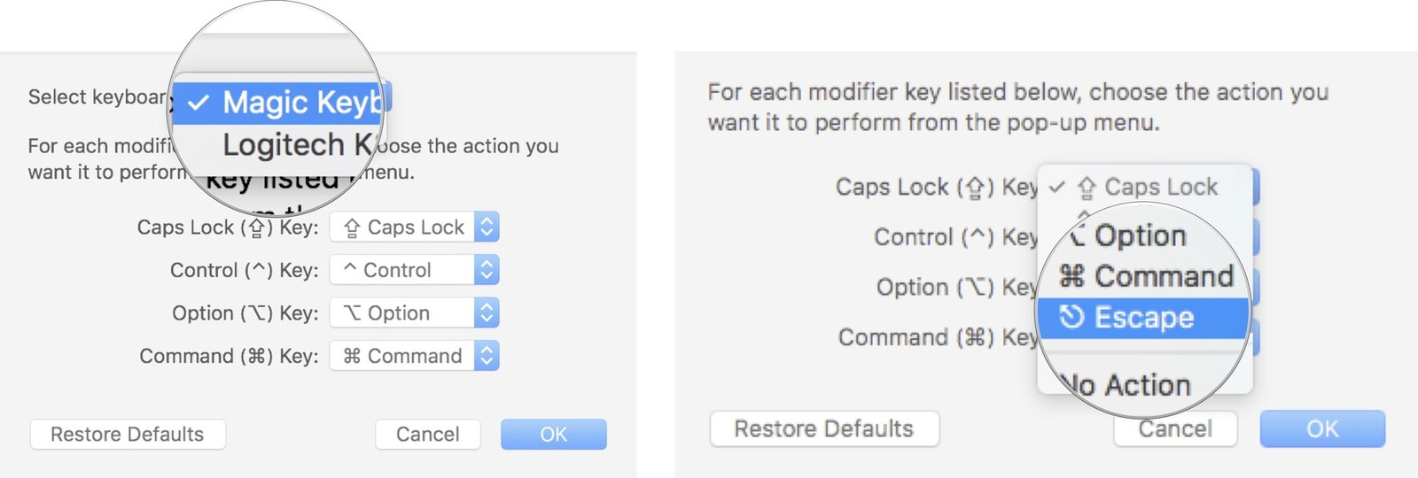 Select the built-in keyboard, and then select Escape from the Caps Lock drop down menu