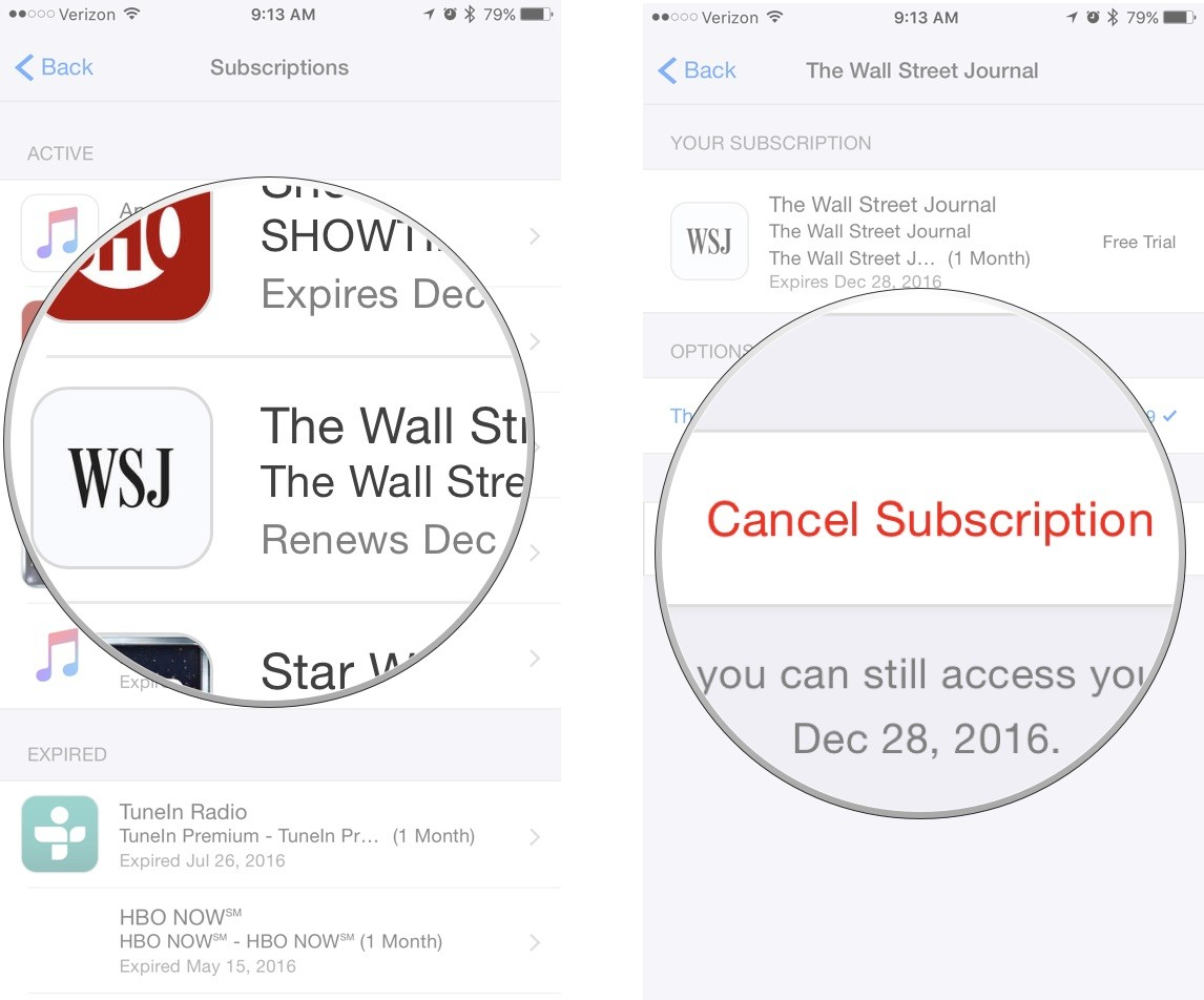 Tap a subscription, then tap Cancel Subscription