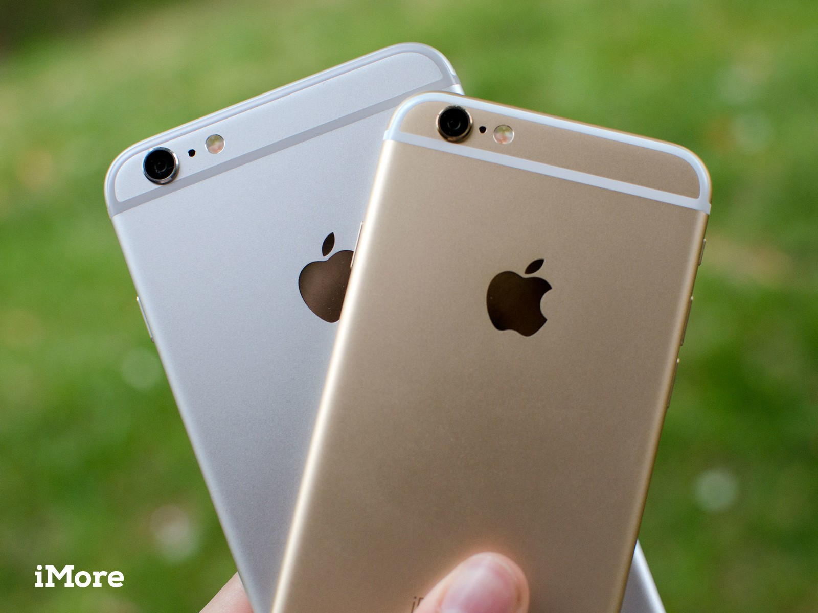 Apple takes top smartphone vendor spot in China thanks to iPhone 6, 6 Plus
