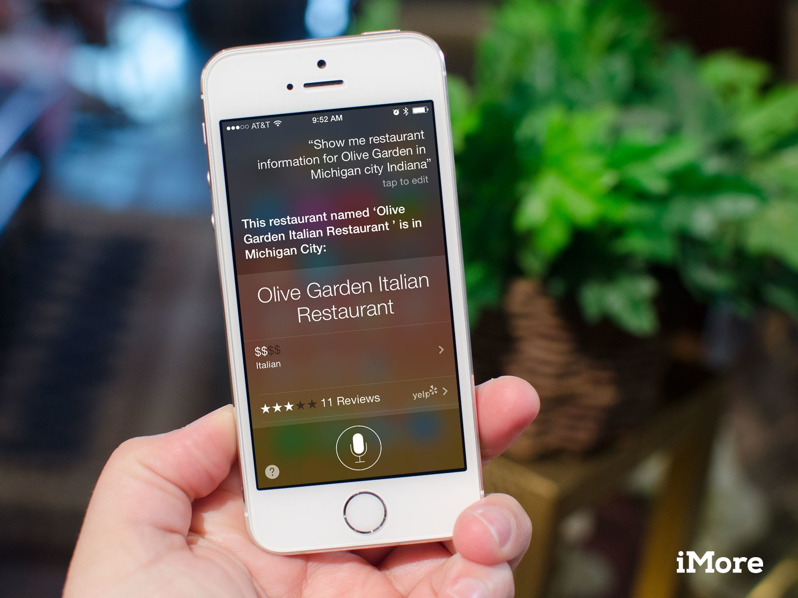 How to get pricing, hours, and general restaurant information with Siri